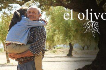 el olivo pelicula iciar bollain