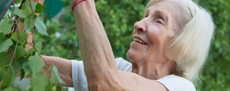 osteoporosis personas mayores