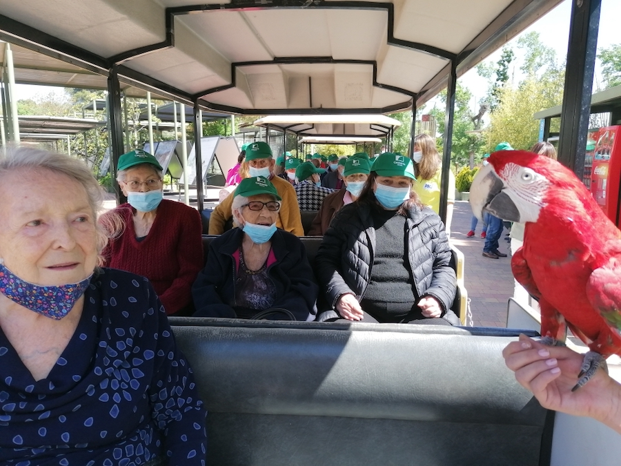 zoo personas mayores
